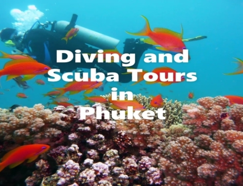 Diving and Scuba Tours
