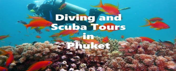 Scuba and Diving Tours in Phuket