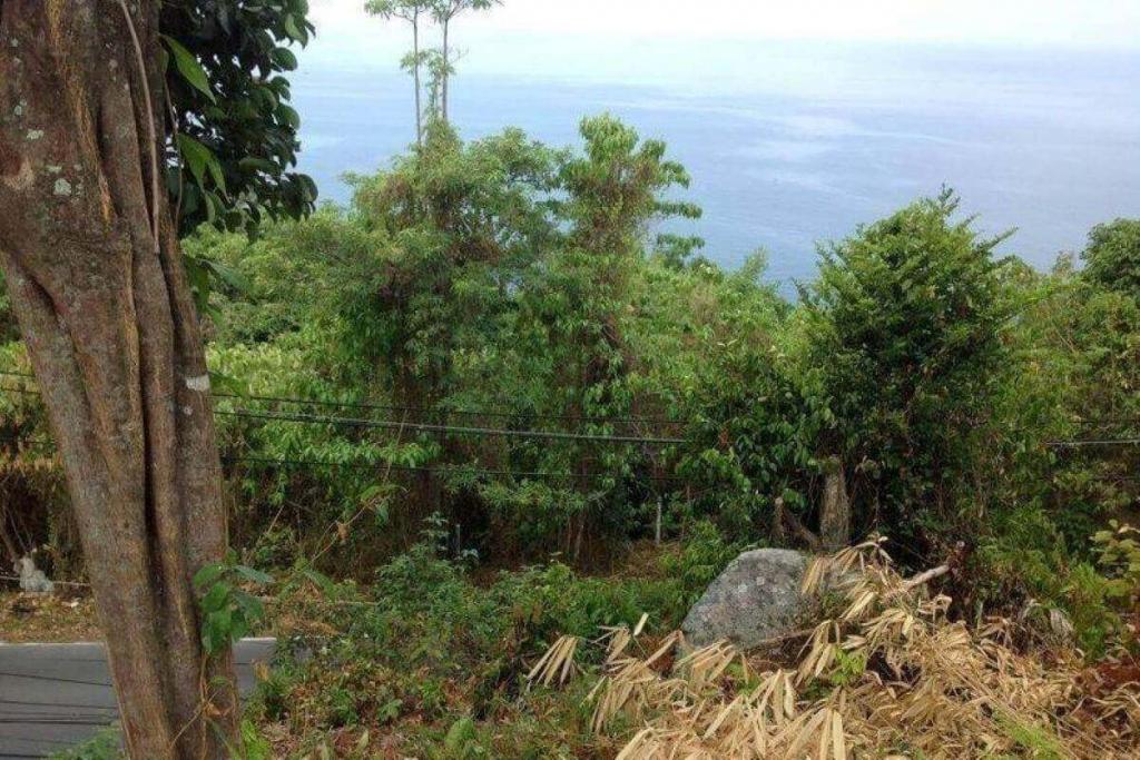 6 Rai (9,600sqm) Sea View Land for Sale next to Ayara in Kamala, Phuket