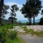 7 Rai (11,200 sqm) Sea View Land for Sale near Tri Trang Beach in Patong, Phuket
