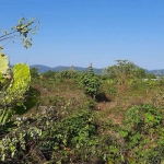 1 Rai (1,600 sqm) Plot for Sale in Pasak Soi 8 in Cherng Talay, Phuket