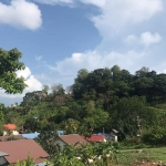 2 Rai (3,200 sqm) Sea View Land for Sale near Nai Harn Beach, Phuket