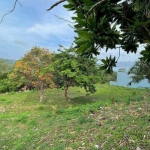 2,048 sqm or 1.1 rai Prime Sea View Land along the Main Road for Sale in Patong, Phuket
