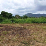 620 sqm or 155 square wah Land for Sale by Owner near Rawai Beach, Phuket