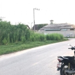 177 Square Wah (708 sqm) Corner Land for Sale by Owner near Palm House International School in Rawai, Phuket